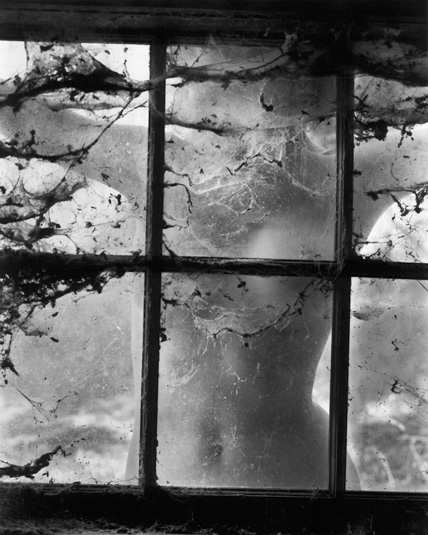 Wynn Bullock, Nude behind Cobwebbed Window, 1955