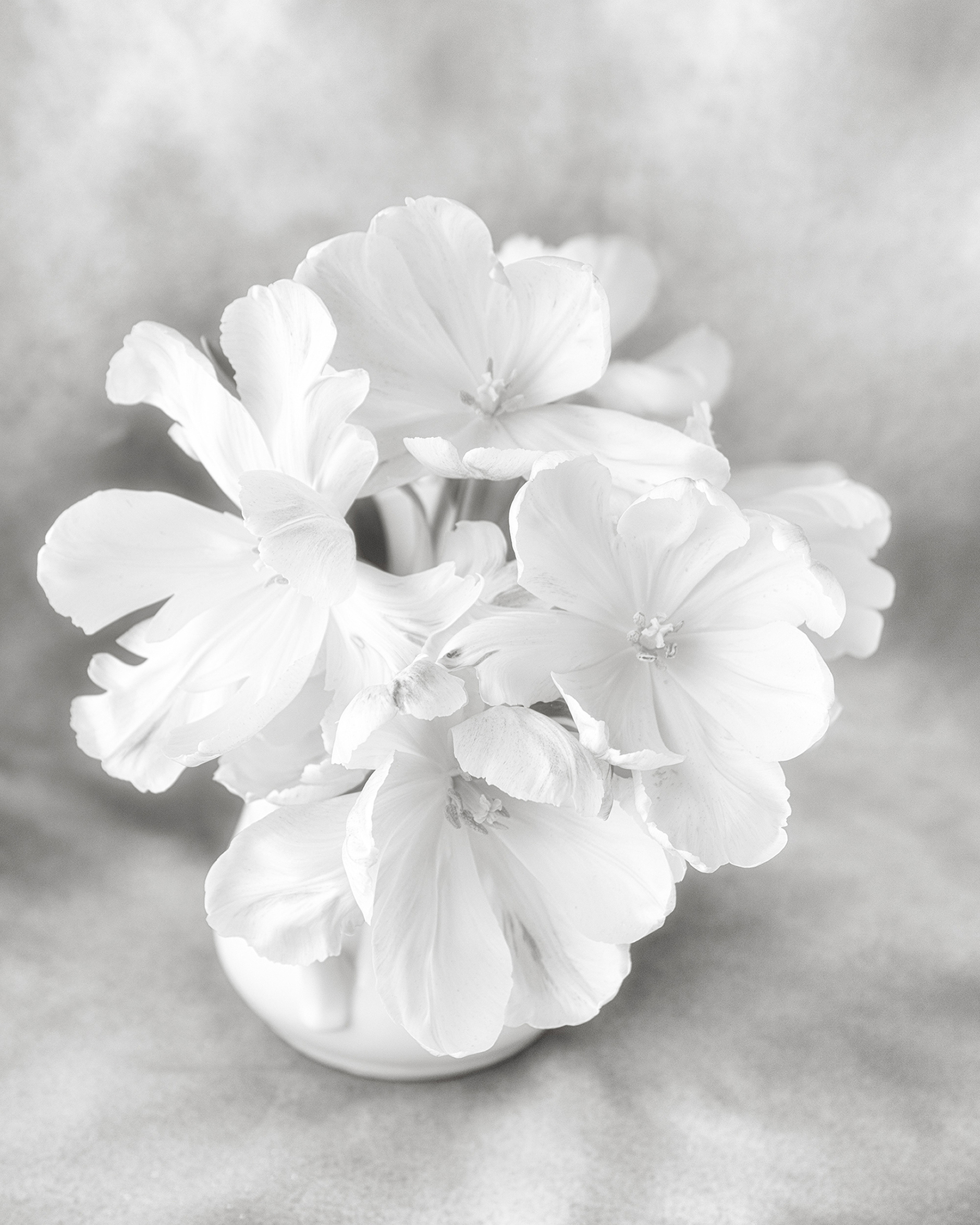 Karen Connell High Key Floral Viewpoint Photographic Art Center